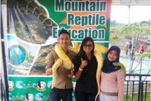Reptile Education, Wahana Baru The Mountain